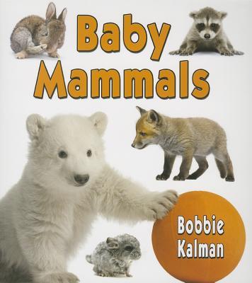 Baby Mammals By Kalman, Bobbie